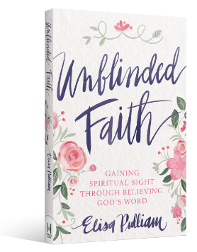 Unblinded Faith - 90 Day Devotional