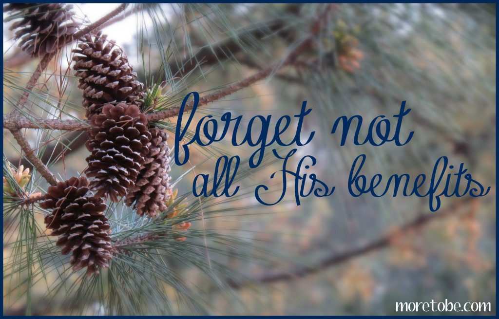 http://www.moretobe.com/wp-content/uploads/2013/09/forget-not-His-benefits.jpg