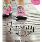 Journey to Freedom Leader's Guidein Paperback