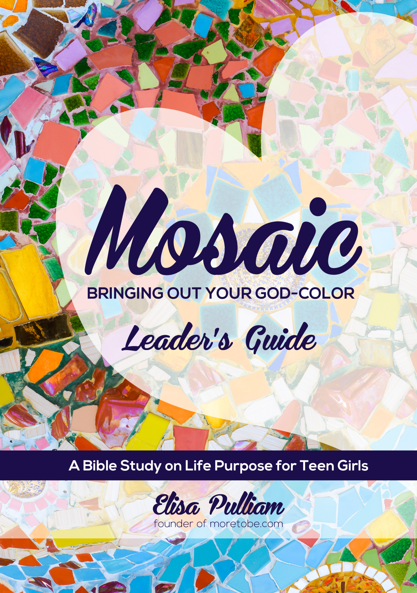 mosaic_leaders_front_feb2016