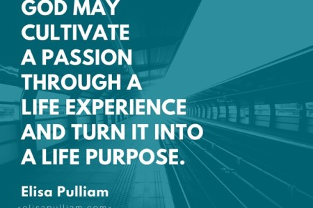 How to Cultivate Passion & Purpose