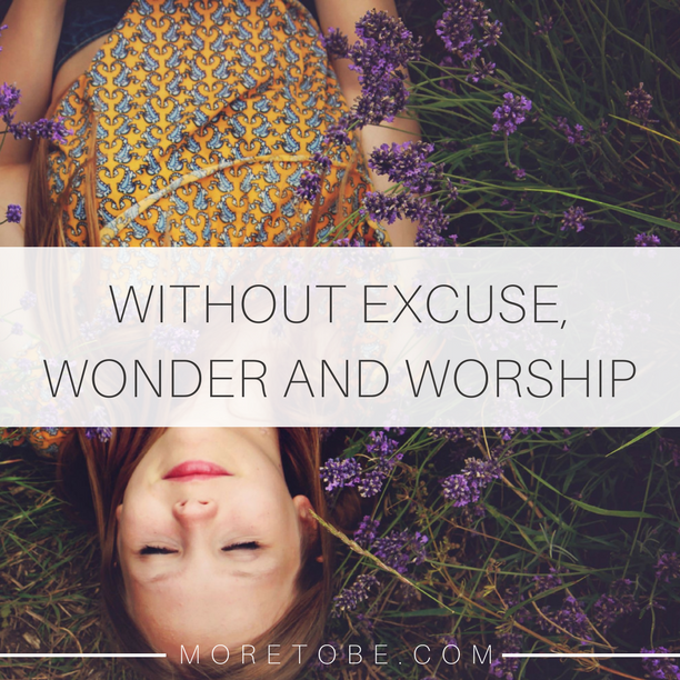 Without Excuse, Wonder and Worship