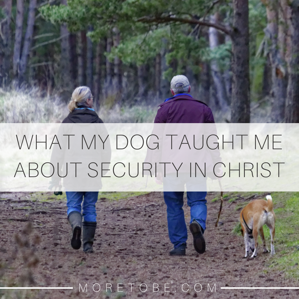 What My Dog Taught Me About Security in Christ