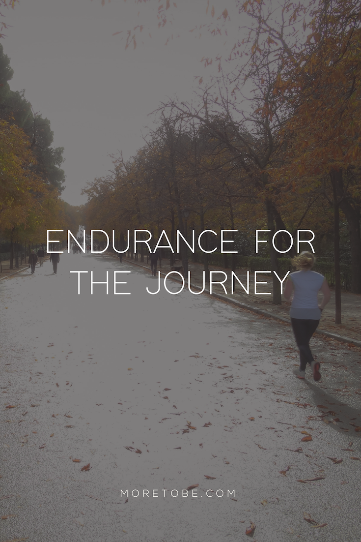 Endurance for the Journey . . . by Amanda Martinsen