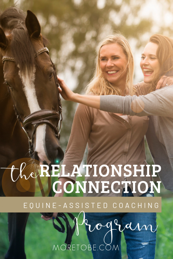 The Relationship Connection Equine-Assisted Coaching Program