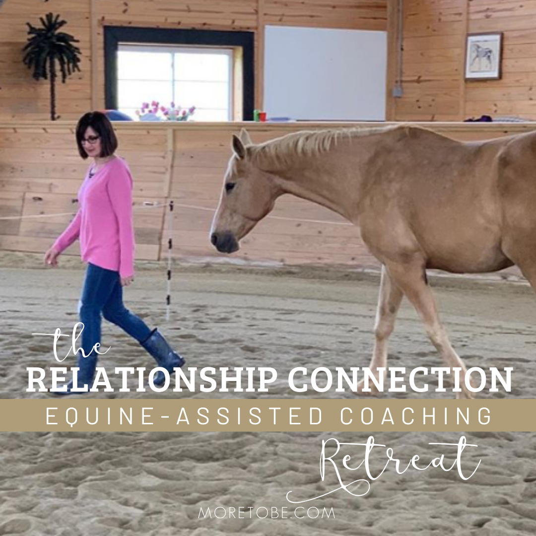 Relationship Connection Retreat